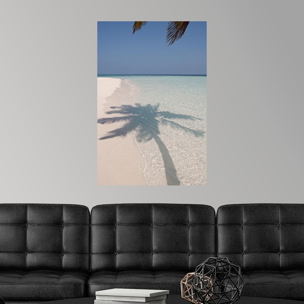 Deserted Island Beach: Shadow Of A Palm Tree On A Deserted Island Beach Poster