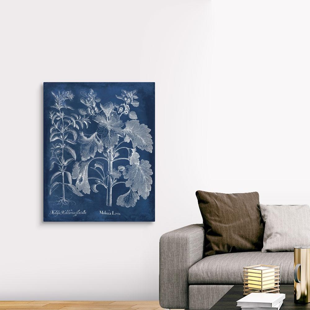 Besler Leaves in Indigo I Canvas Art Print