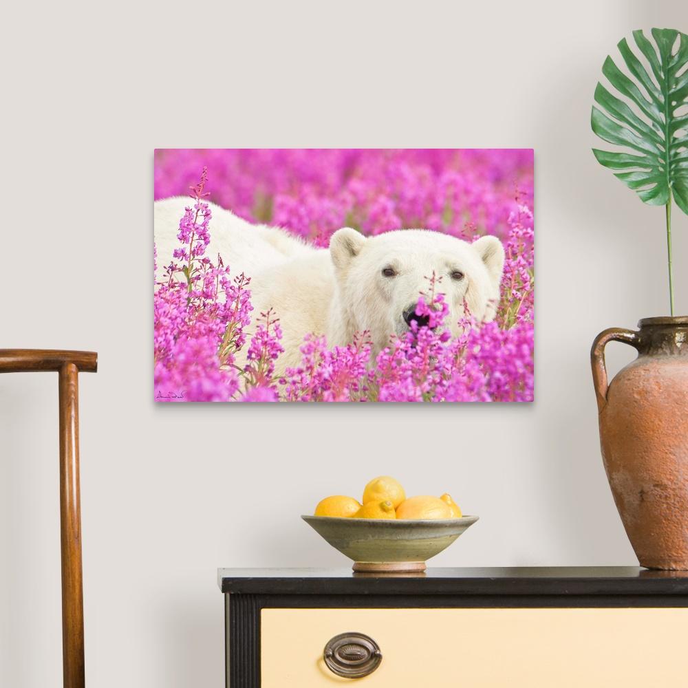 Polar-Bear-Playing-Peekaboo-Canvas-Art-Print thumbnail 6