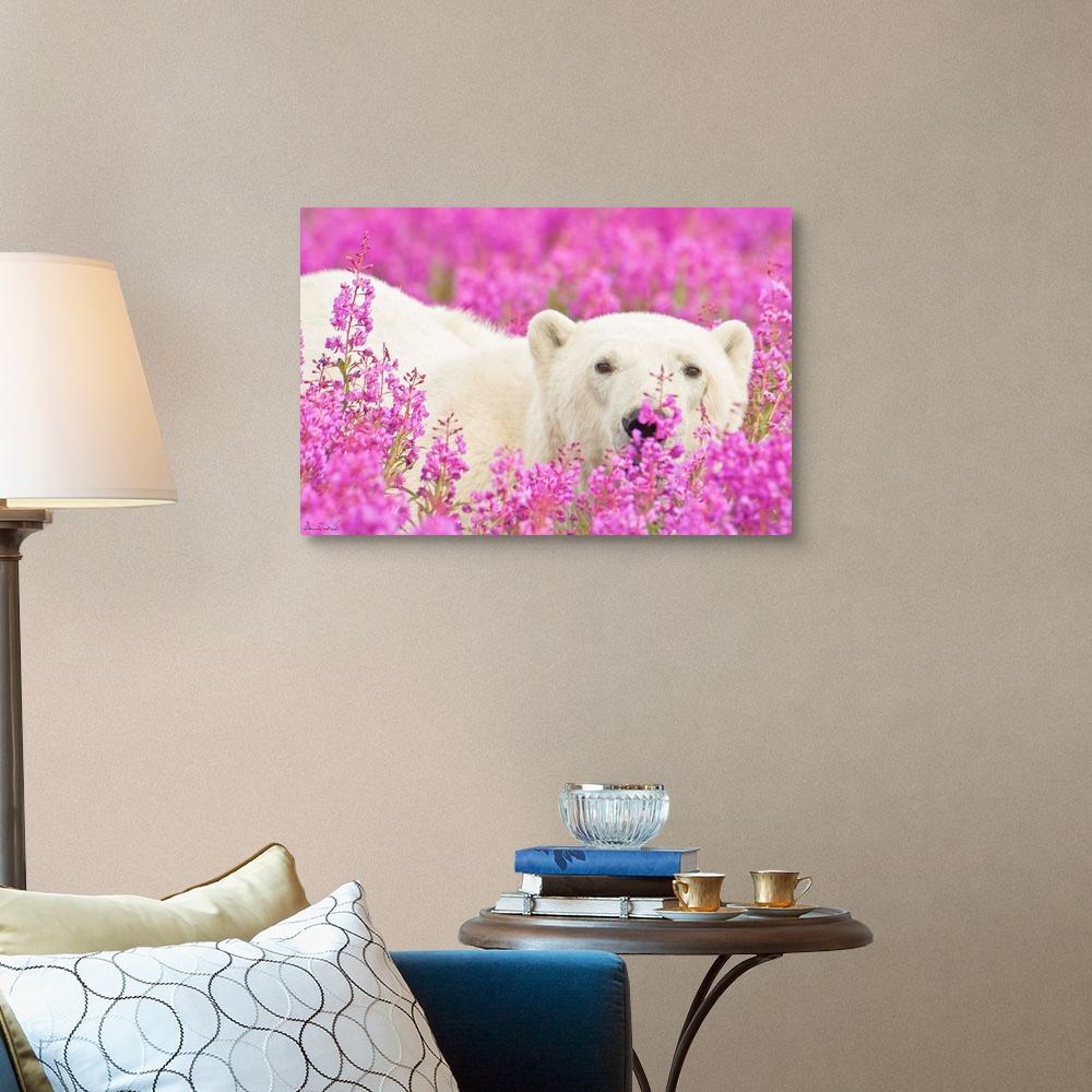 Polar-Bear-Playing-Peekaboo-Canvas-Art-Print thumbnail 7