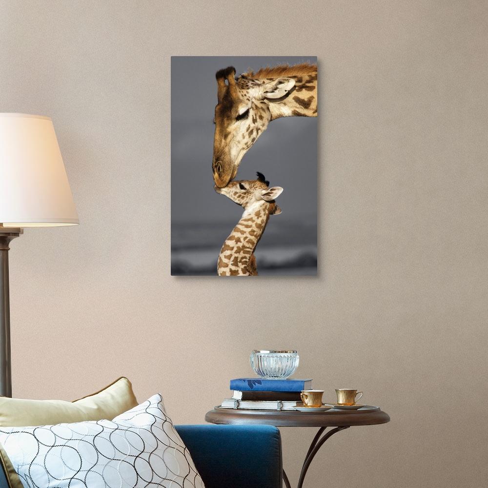 Giraffe Home Decor Masai Mara Giraffe Canvas Wall Art Print