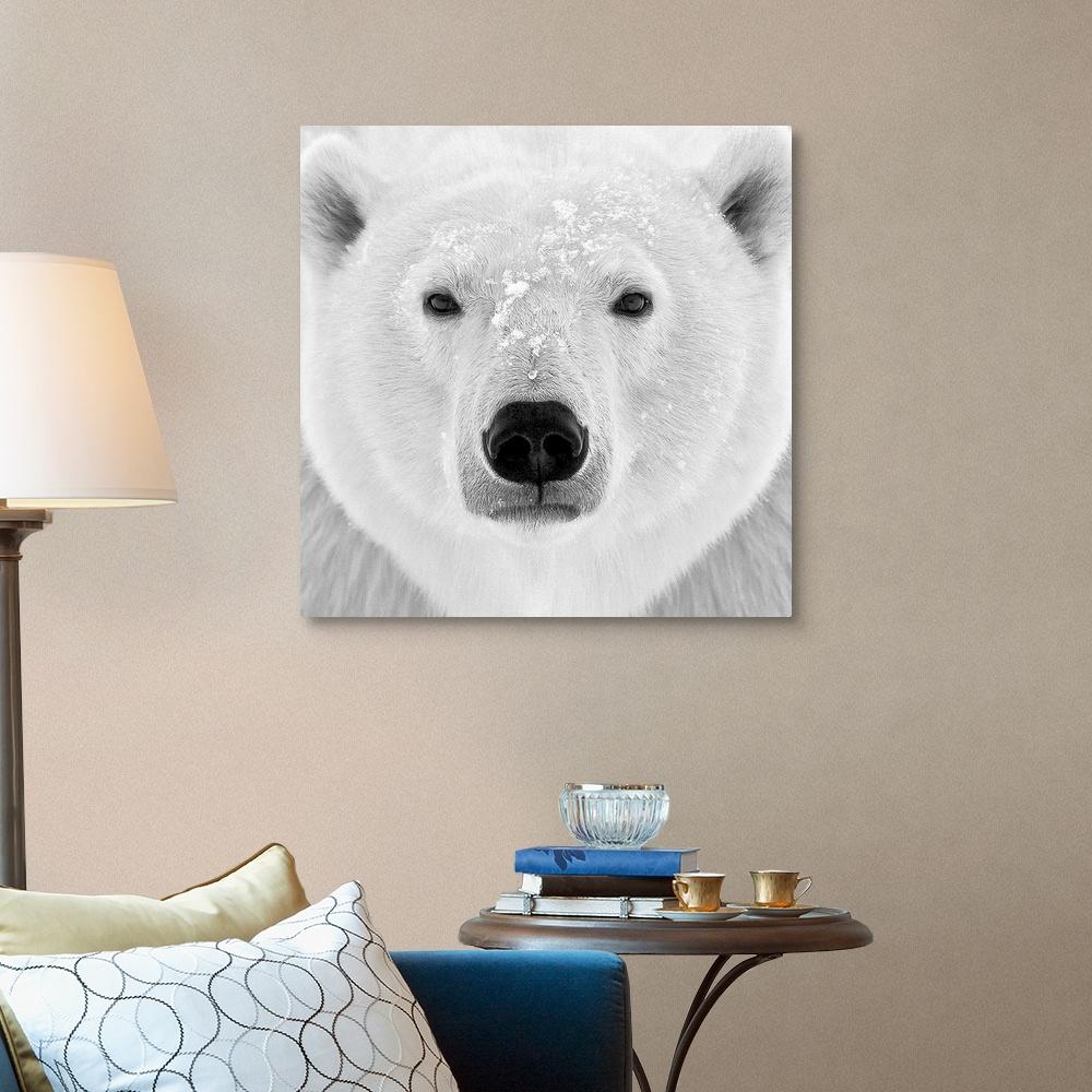 Polar-Bear-Canvas-Wall-Art-Print-Bear-Home-Decor thumbnail 9