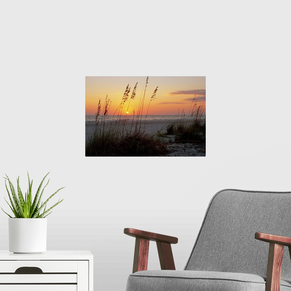 Anna Maria Island Beach: Sunset, Gulf Coast, Longboat Key, Anna Poster Art Print
